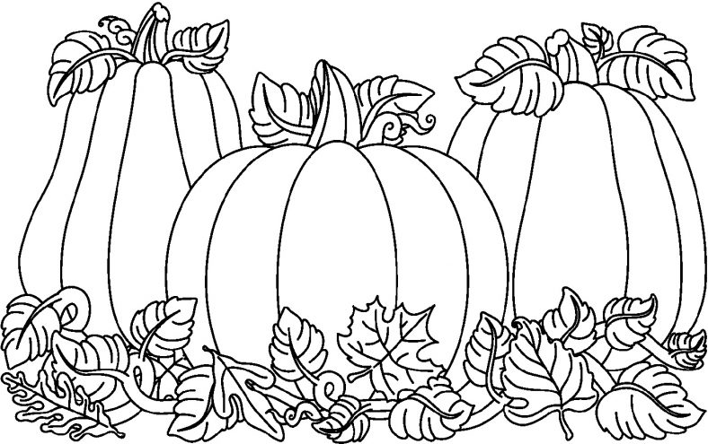 Fall Color Pages Pumpkin