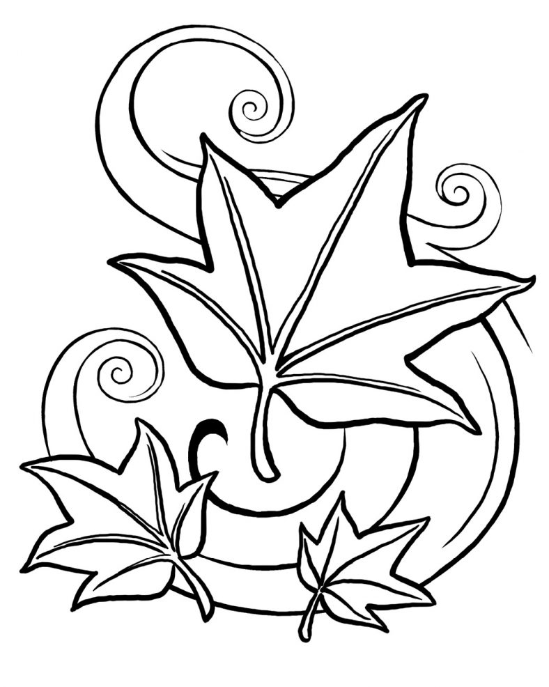Leaf Coloring Printables