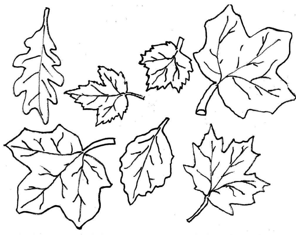 Leaf Fall Coloring Page