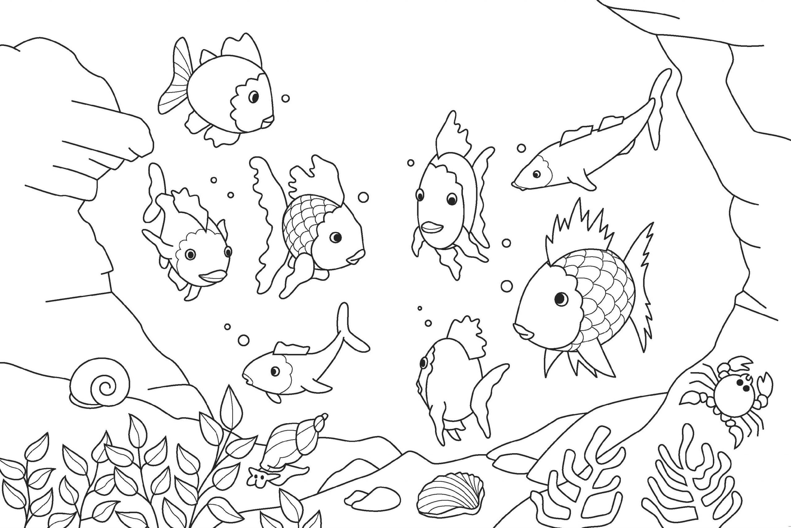 School of Fish Color Sheet
