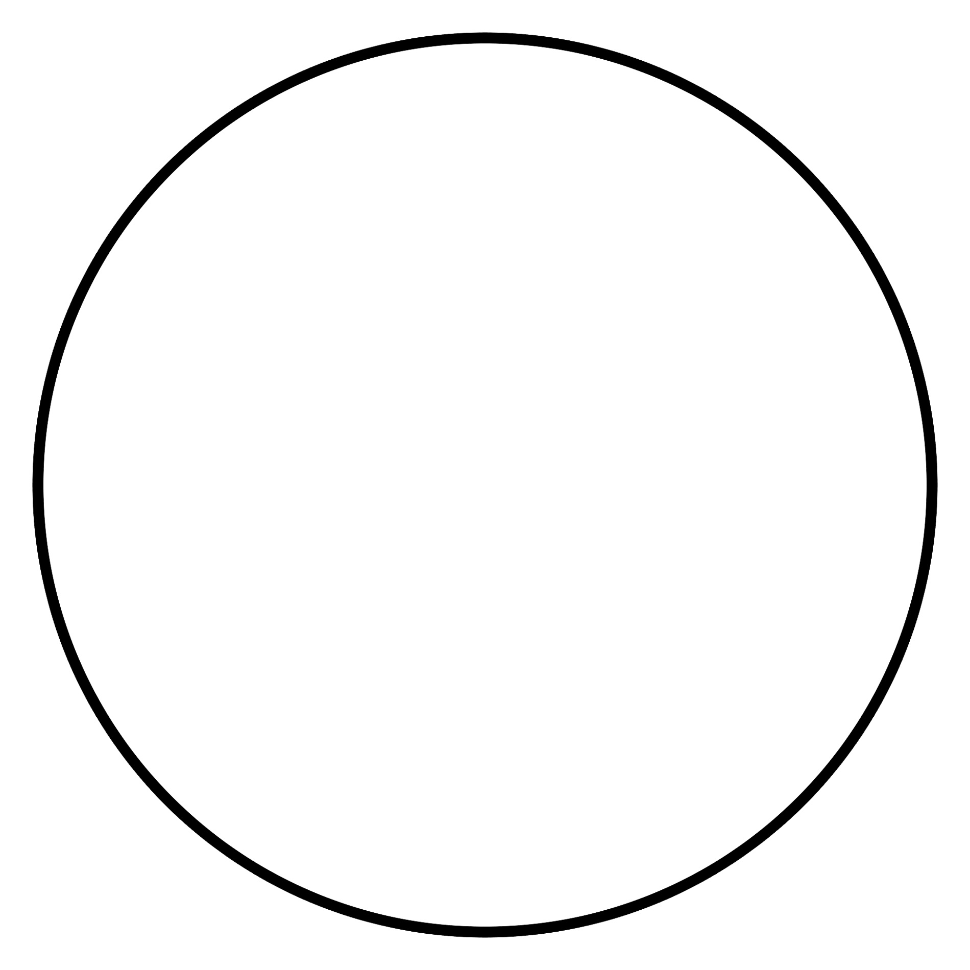 Blank Percent Circle Template