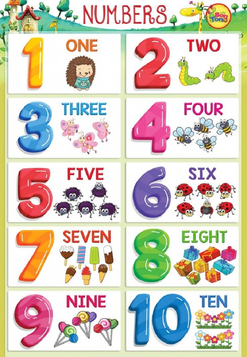 Fun Picture of Numbers