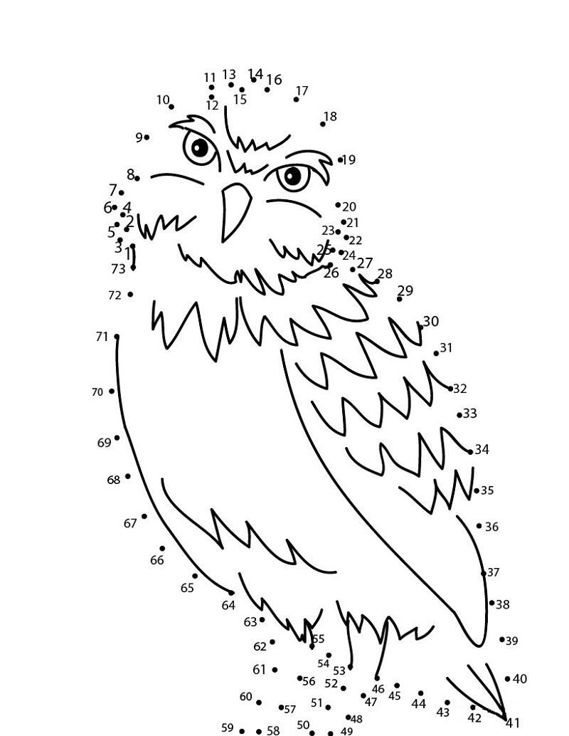 Owl Dot To Dot Printables