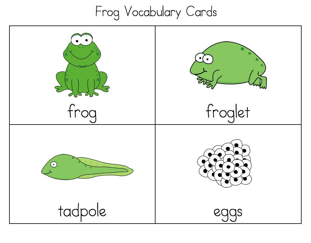 frog activities for kids learning