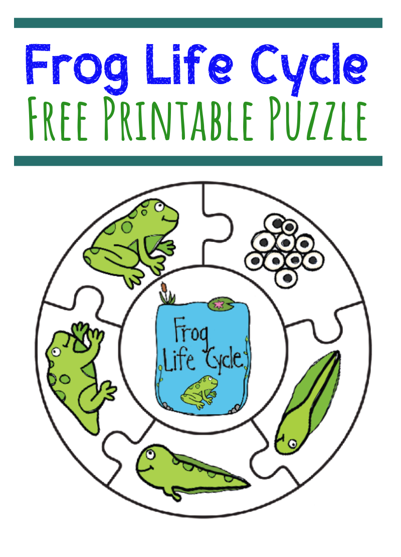 puzzle frog activities for kids